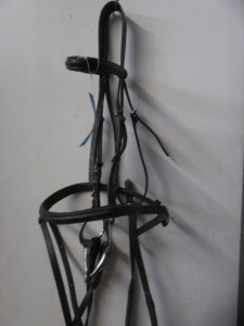 Cob Windsor bridle